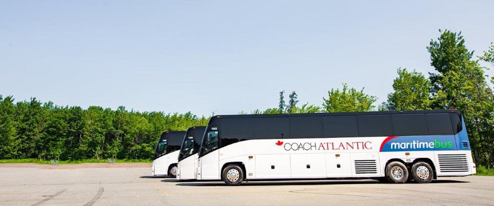 three coach atlantic maritime bus coaches